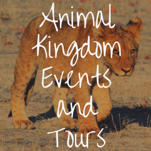 Animal Kingdom Events and Tours