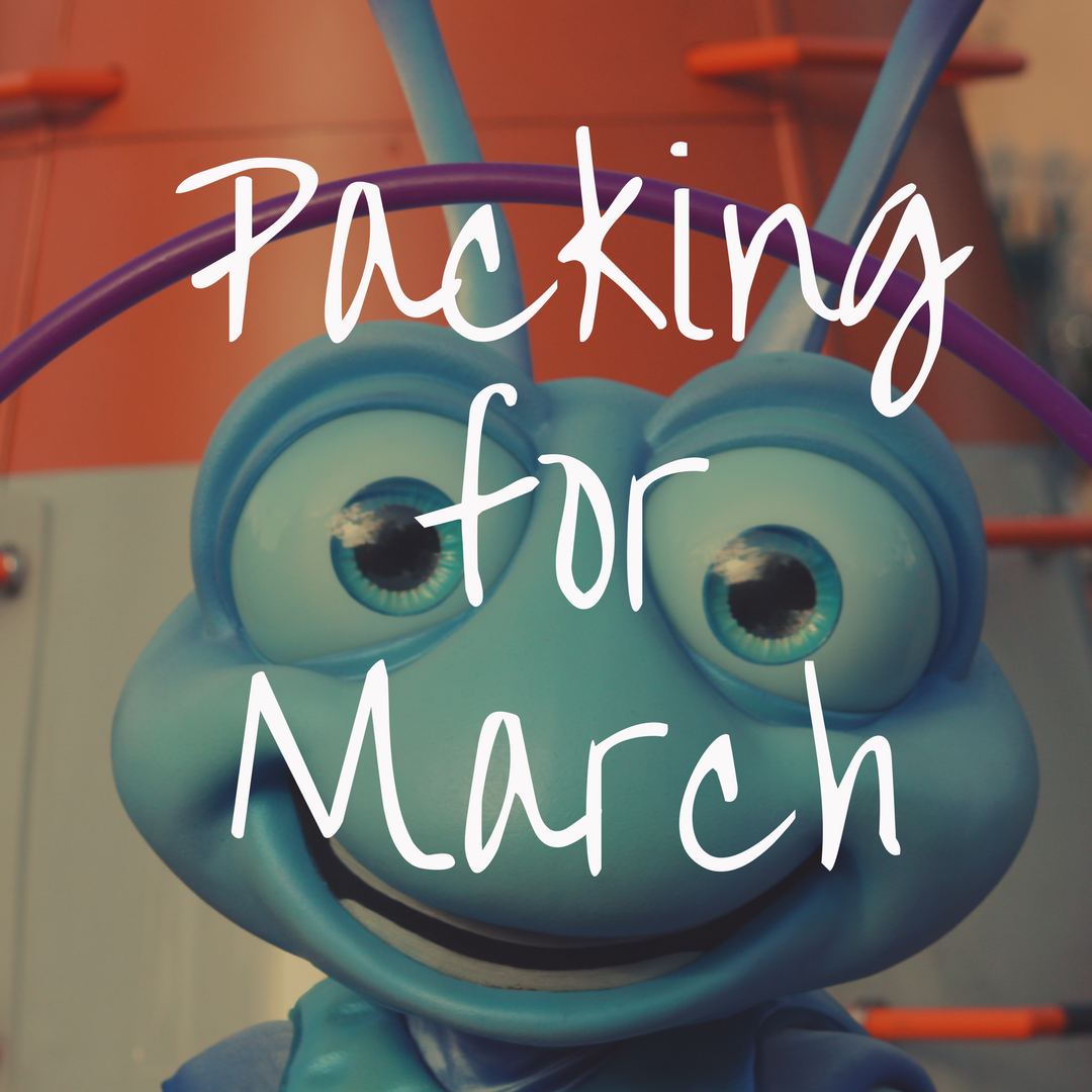What to Pack for Disney World in March