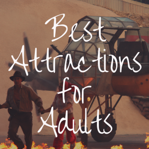 What Are the Best Disney World Attractions for Adults?
