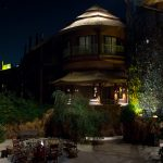 Animal Kingdom Lodge review