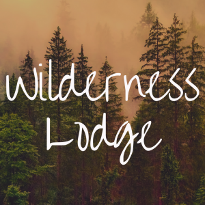 Disney's Wilderness Lodge review