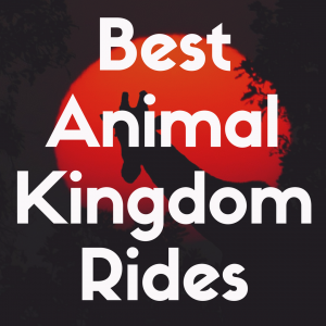 The 13 Best Rides at Animal Kingdom to Experience