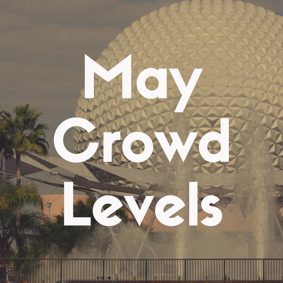 Crowd Levels at Disney World in May