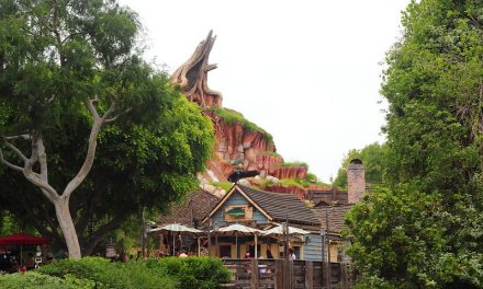 Splash Mountain ride review
