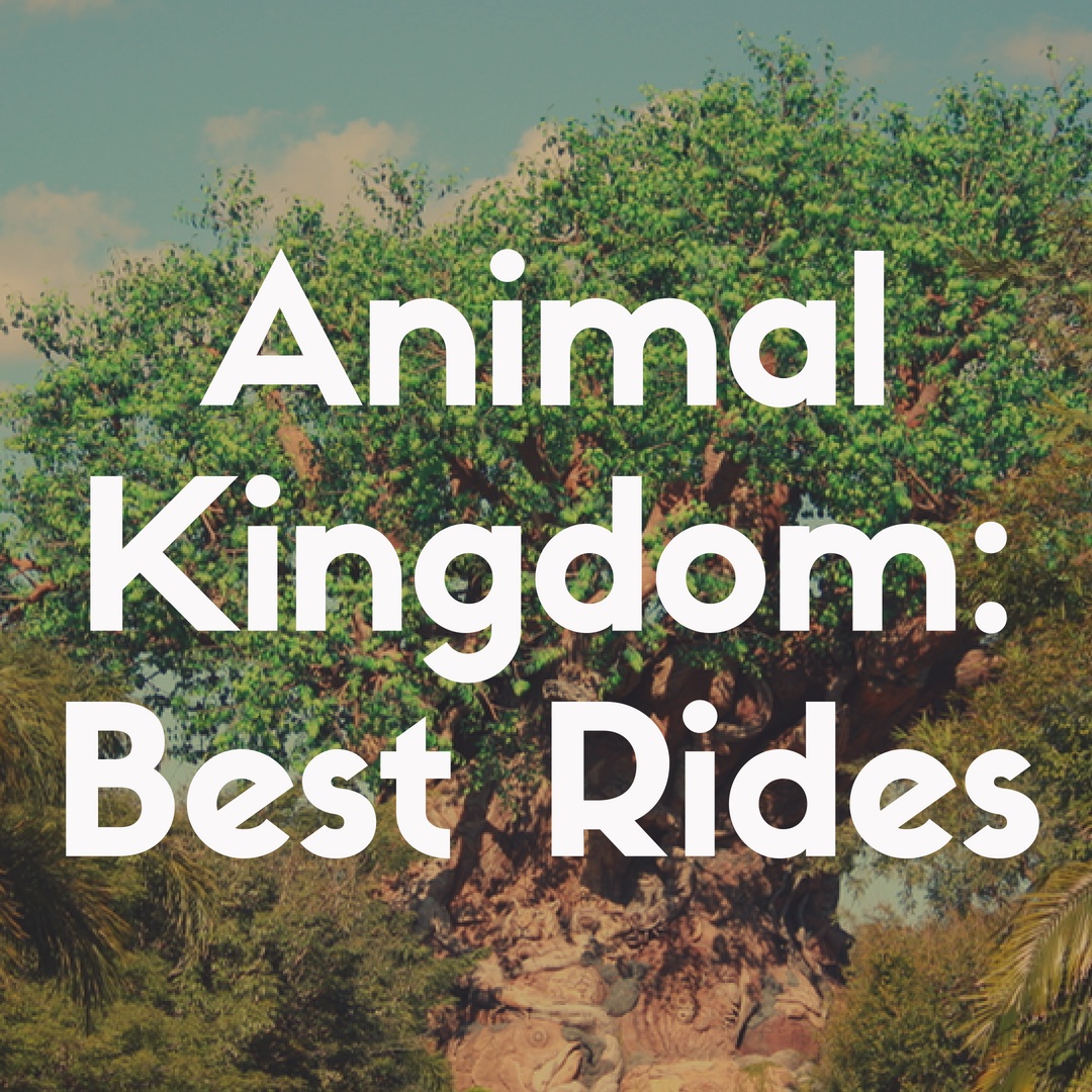 The Best Rides to Fast Pass at Animal Kingdom