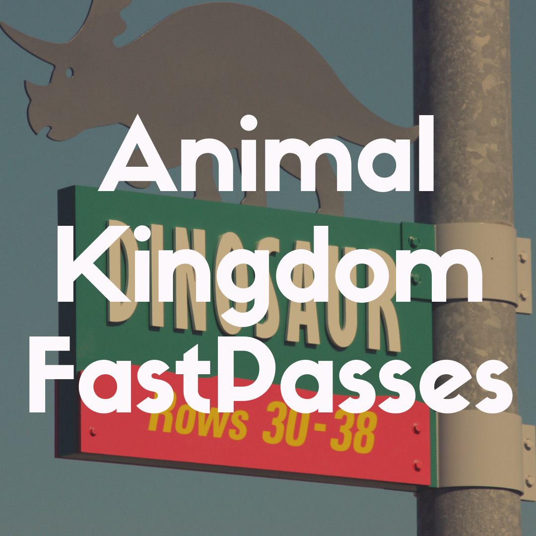 The 7 Best Fast Passes for Animal Kingdom to Reserve in Advance