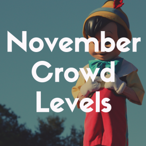 Crowd Levels at Disney World in November