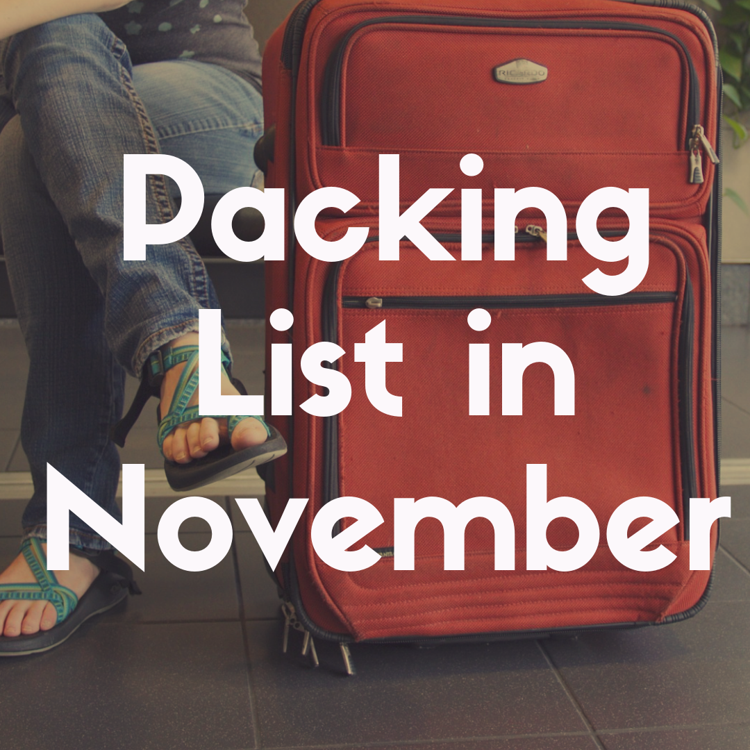 Disney World Packing List for November