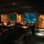 Coral Reef Restaurant review