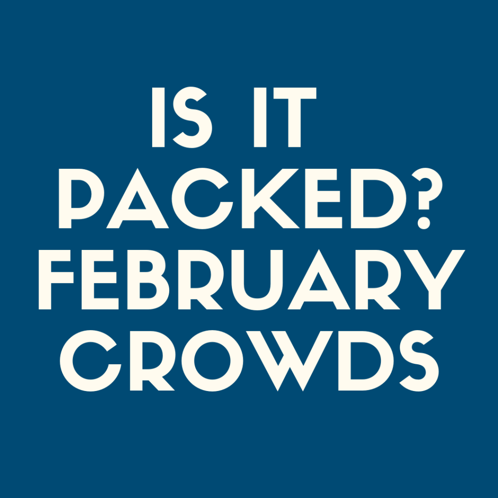 Is it Packed?  Disneyland crowds in February--what should you expect?