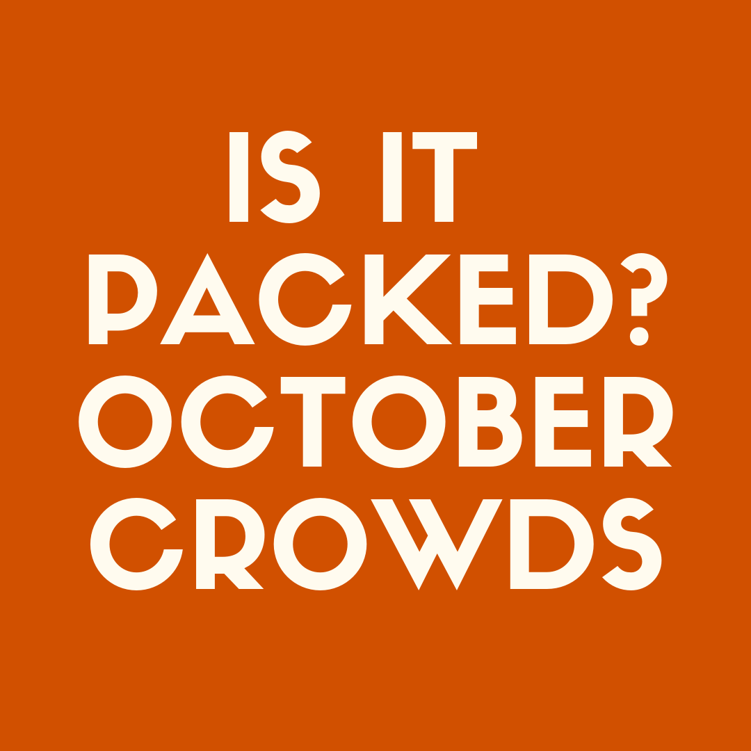 Is It Packed: Disney World in October