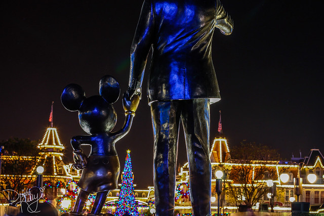 The Best Packing List for Disney World in November