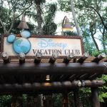 Is Disney Vacation Club Worth It or Not?