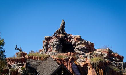 The Top 10 FastPasses for Magic Kingdom You Can't Miss
