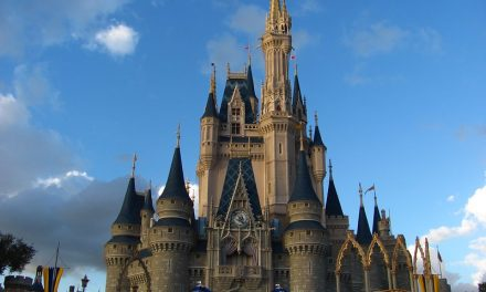 Is it Packed: Disney World in November
