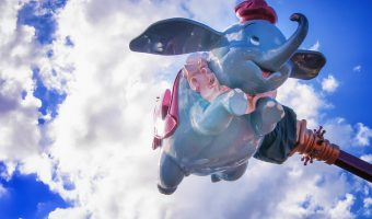 Guide to Guests with Disabilities at Disney World