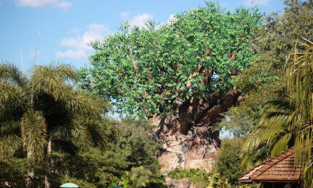 The 10 Best Snacks at Animal Kingdom to Eat and Enjoy