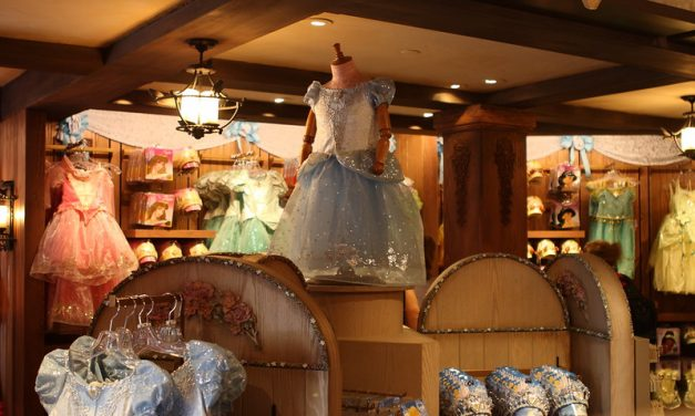 Top Bibbidi Bobbidi Boutique Dress Sizes, Prices, and Top Choices